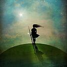 Morning Star by Catrin Welz-Stein