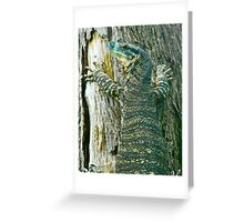Gert the Goanna Greeting Card