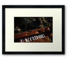 container Framed Print