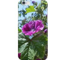 Dreams they never knew  iPhone Case/Skin