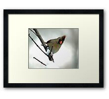 In a Snowstorm Framed Print