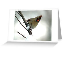 In a Snowstorm Greeting Card