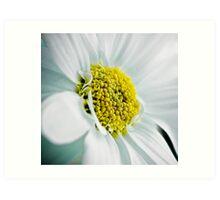power flower Art Print