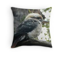'Kooka' Throw Pillow