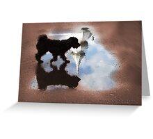 Dog Walking on Water Greeting Card