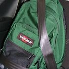 The Green Back Pack by Harlequin