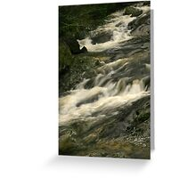 What A Rush! Greeting Card