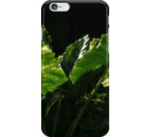 morning light - luz en la mañana iPhone Case/Skin