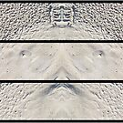 Sandy Triptych by Craig Watson