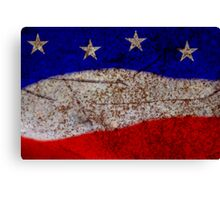 Red White & Blue Canvas Print