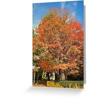 Glorious Fall Greeting Card