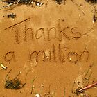 A million thanks... by gracelouise