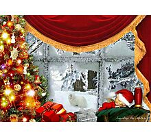 Snowdrop the Maltese & Santa's Elf Photographic Print