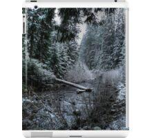 A Winters Dream iPad Case/Skin