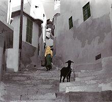 Medina Girl by artsMark