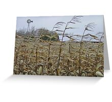 Fall winds Greeting Card