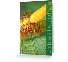 Dragonfly, wings in yellow Greeting Card