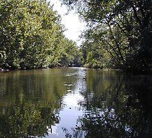 Barton Creek On A Lazy Day by Cathy Jones