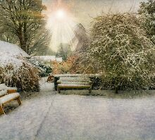 Magical Snowy Garden by Ian Mitchell