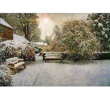 Magical Snowy Garden Photographic Print