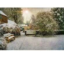 Magical Snowy Garden Photographic Print