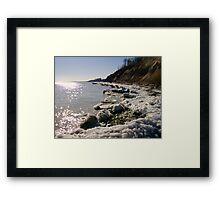 Spring Shores Framed Print