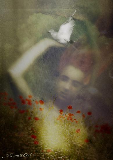 Peace on Earth by Daniela M. Casalla