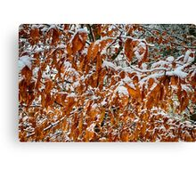 Snowfall -3 Canvas Print