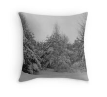snow scape Throw Pillow