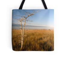 """Lone Cypress"" Tote Bag"