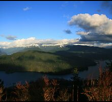 Burnaby Mountain by Brad Watson