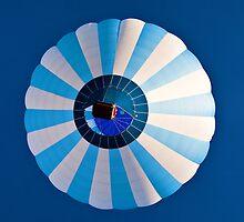 Blue on Blue by PhotosByHealy