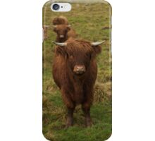 Highland cattle iPhone Case/Skin