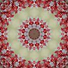 Designs on a Wreath by Monnie Ryan