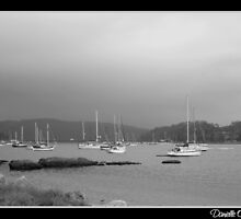 Boats in B&W by DanielleM