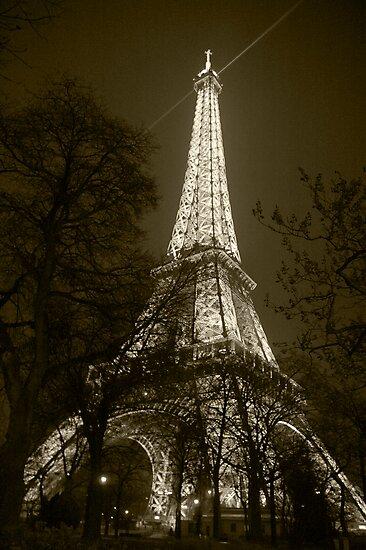 Eiffel Tower 3 by Tim Condon