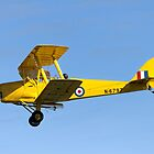 De Havilland DH.82A Tiger Moth G-ANEH / N-6797 by Andrew Harker