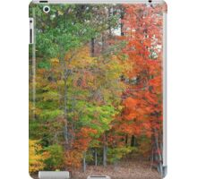 Roadside Autumn Trees iPad Case/Skin