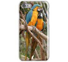 Blue And Gold Macaw iPhone Case/Skin