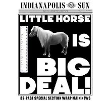 Little horse is big deal. (white) Photographic Print