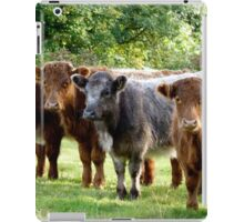 You Brought The Hay Then ? iPad Case/Skin