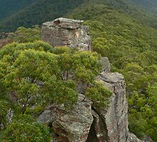 Ruined Castle to Narrowneck by STEPHEN GEORGIOU