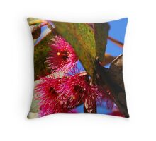 Eucalypt Flower Throw Pillow