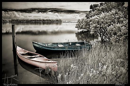 Tranquil Waters by Annette Blattman