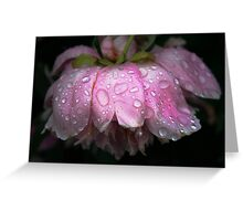After rain Greeting Card
