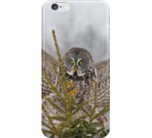 Great Gray Owl iPhone Case/Skin
