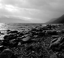Loch Ness by Julie M Gibson
