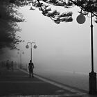Ghosts in the fog by Sara Lamond