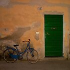 Door & Bike by Danielle Reier