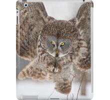 Great Gray Owl iPad Case/Skin